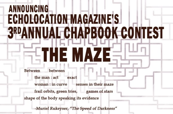 echolocation the maze